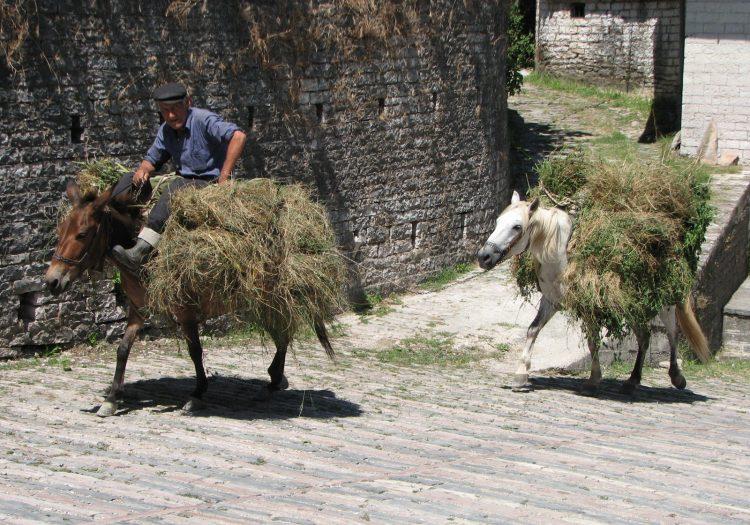Albanien, Schmelztiegel der Kulturen mit Ohrid-See • Herbst 2021 • € 2.245,-