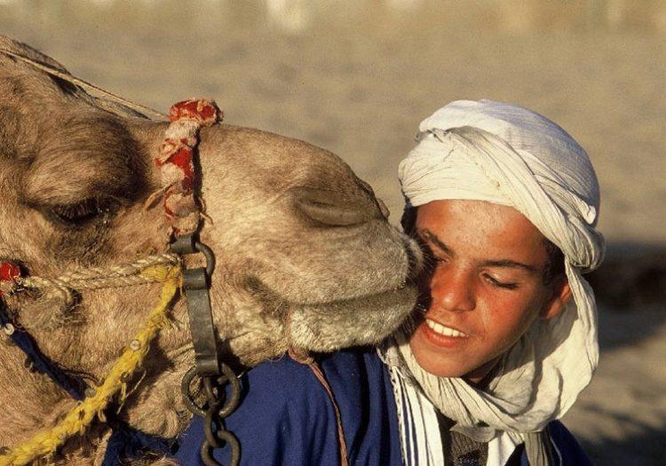 Marokko: Königsstädte & Sahara • Wöchentlich jeweils am Samstag • ab € 1.845,- • schon ab 2 Personen